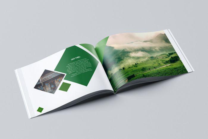 thiết kế catalogue chuyên nghiệp?