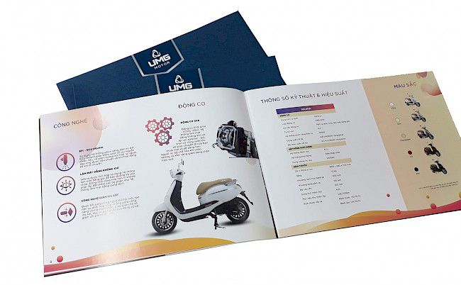 Thiết kế catalogue gồm những nội dung gì?