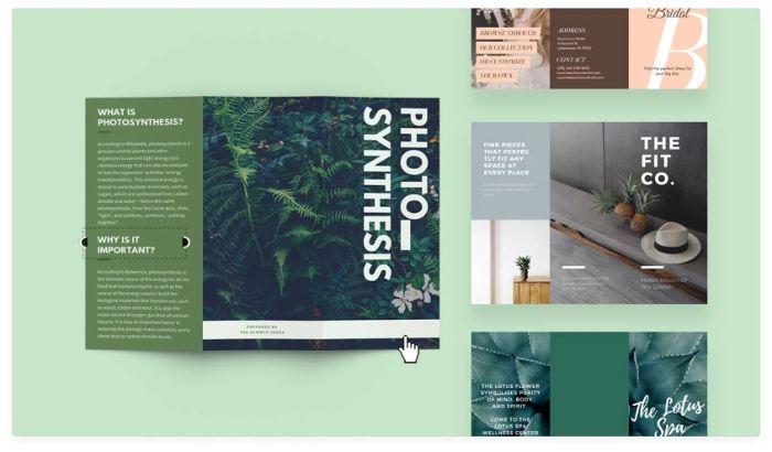 Hình ảnh trên brochure